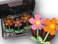 Conj. 6 Flores 75g - 0000000914